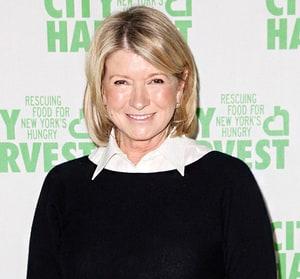 Martha stewart dating today show