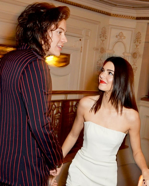 Kendall Jenner Confirms Dating Harry Styles