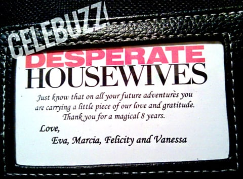 celebuzz desperate housewives