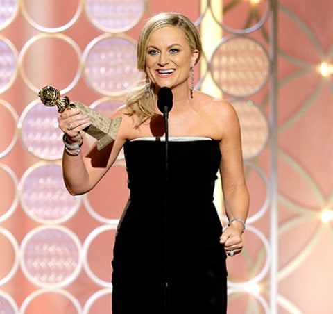Amy poehler wins