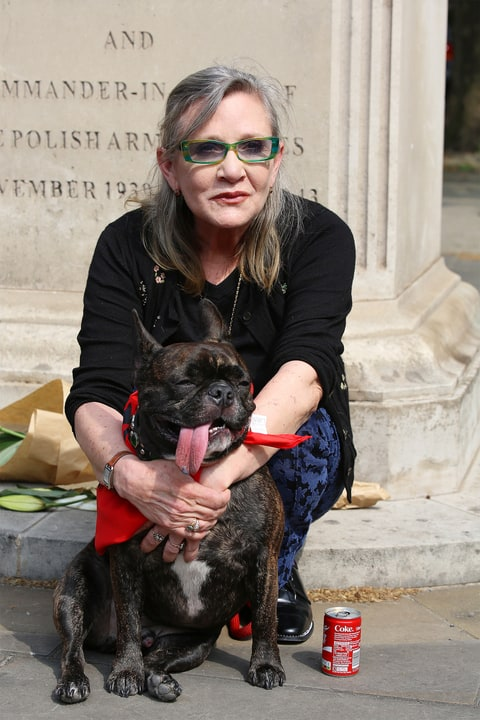 Carrie Fisher and dog Gary