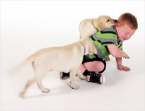apparently kid and puppies