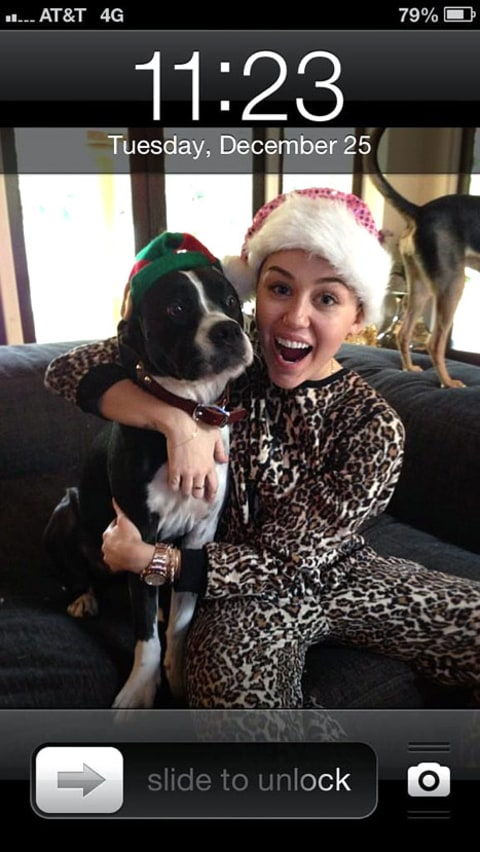 miley and dog xmas