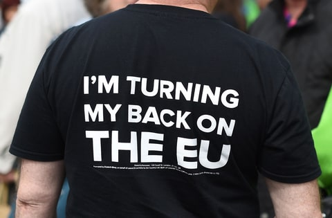 A pro-Brexit campaigner at an event hosted by the rightwing United Kingdom Independence Party in May.