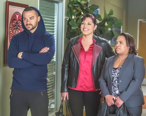 JESSE WILLIAMS, SARA RAMIREZ, CHANDRA WILSON