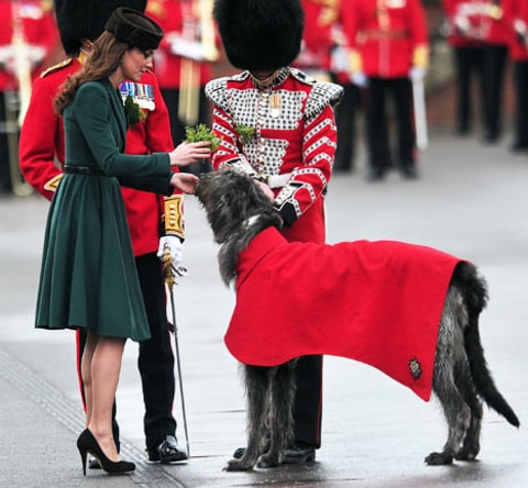 Kate Middleton with dog
