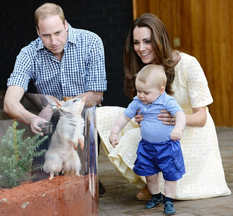 kate middleton prince william prince george zoo