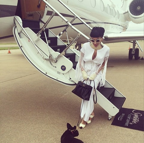 lady gaga and dog