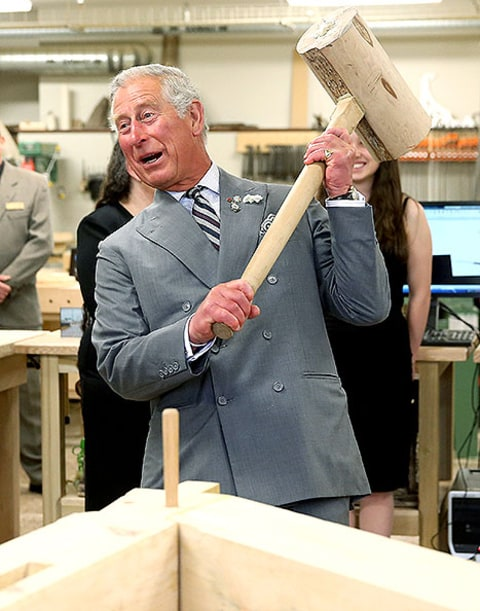 prince charles hammers