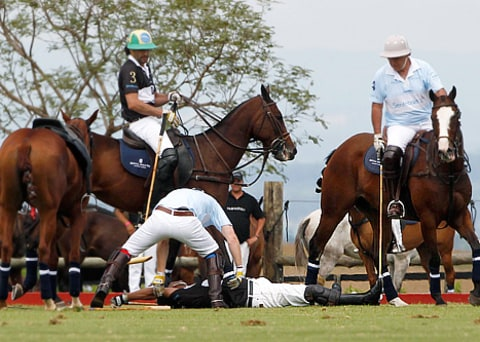 prince harry polo