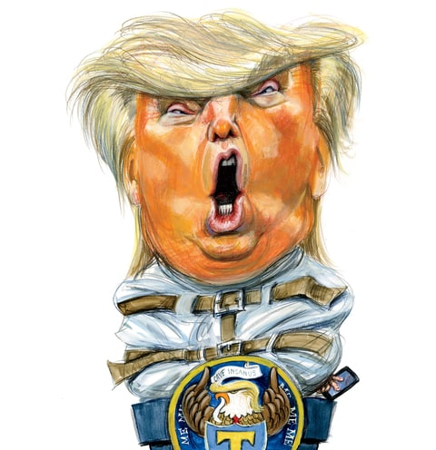donald trump rolling stone cover illustration potus