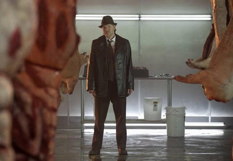 Donal Logue stars as Detective Harvey Bullock in 'Gotham.'