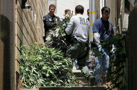 california pot, legalized pot, pot raid, Med-West Distributors, santa rosa raid, cannacraft, san diego pot,