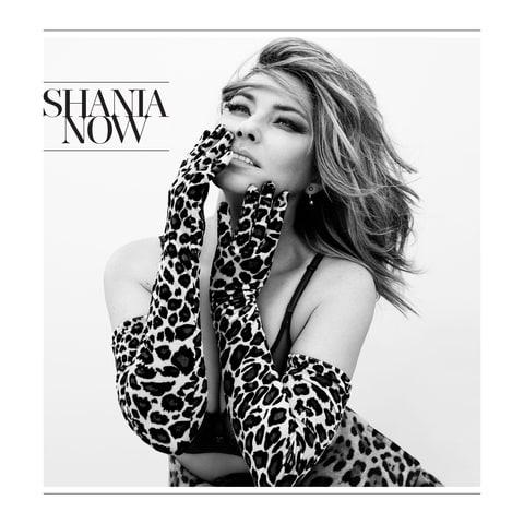 Image result for shania twain now album