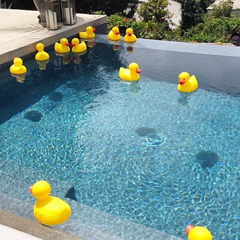 stacy keibler baby shower duckies