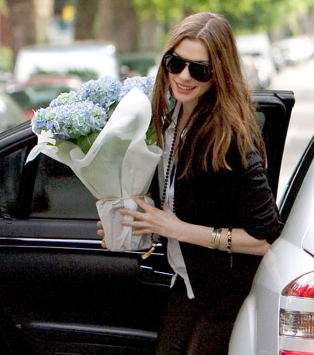 Hathaway and the Hydrangea