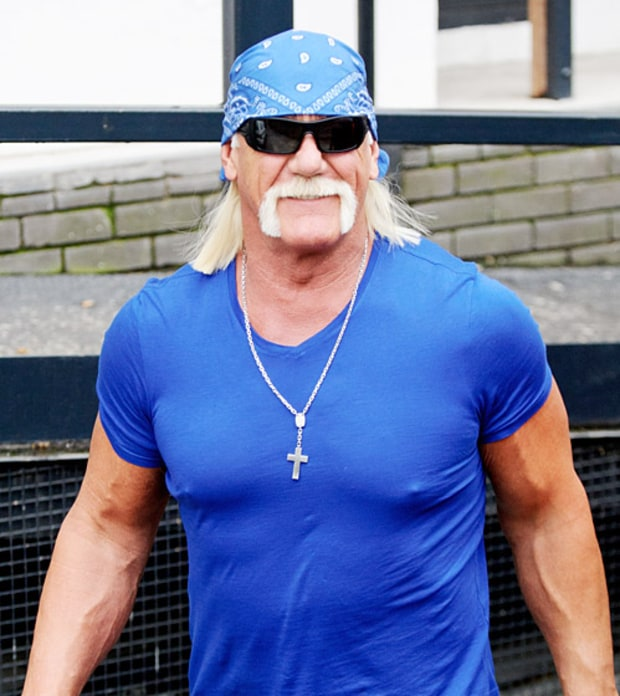 Hulk Hogan (Democrat)