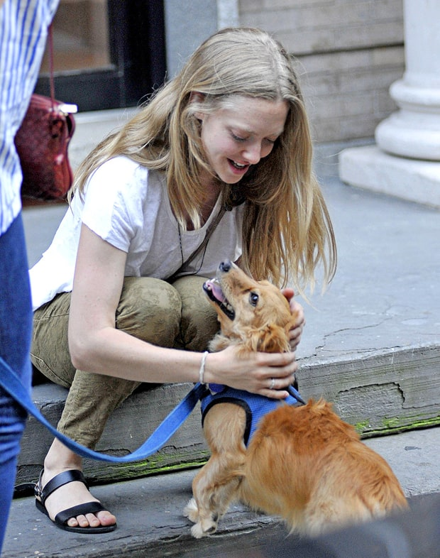 Dog-Lovin' Seyfried