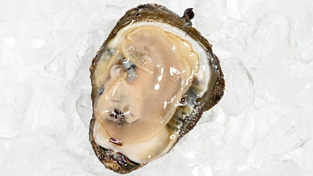 A Shucker's Guide to Oysters