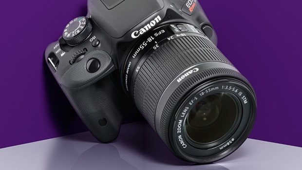 Best New DSLR Cameras to Take Pro-Quality Photos