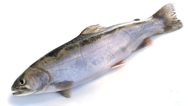 Buy and cook the right farmed fish for home cooking.