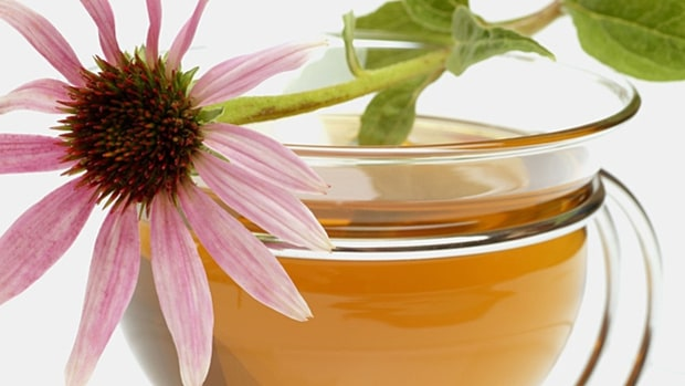 Try some echinacea (if you believe in it).