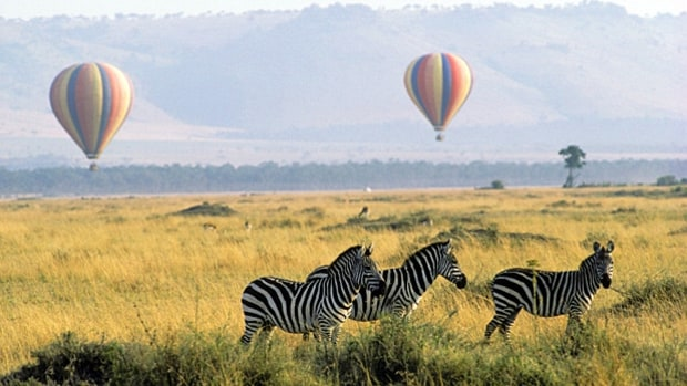 Take an airborne safari (Kenya, Tanzania).