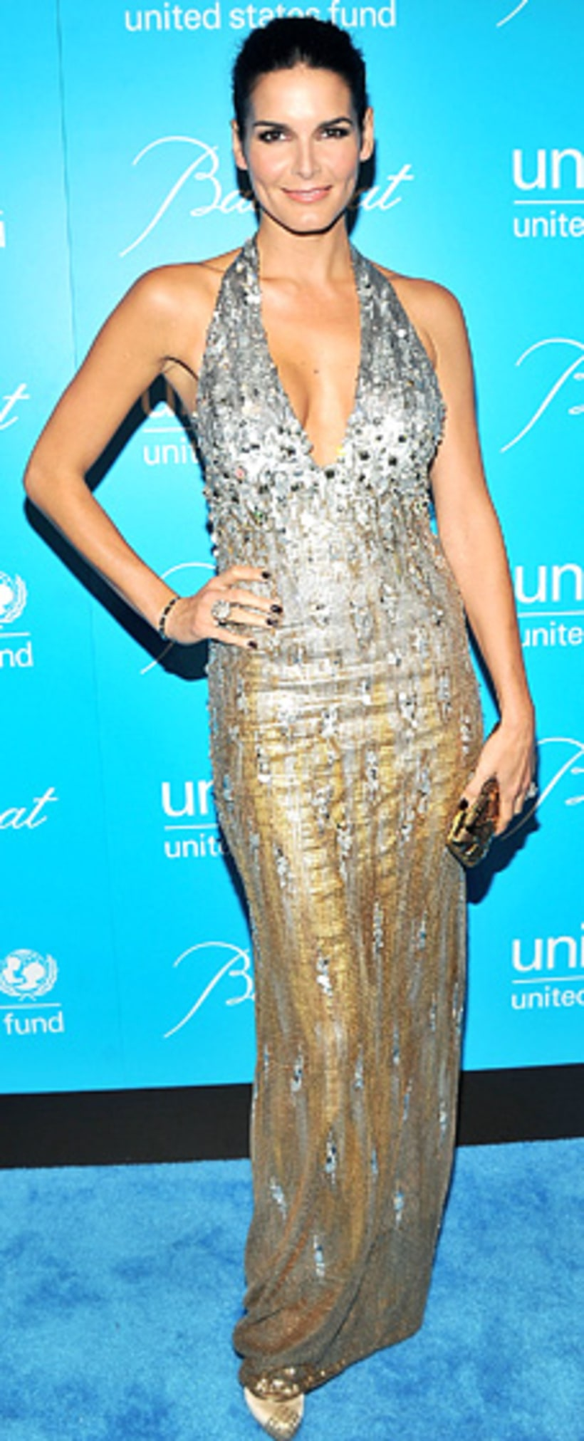 Angie Harmon At The Unicef Snowflake Ball Red Carpet 24