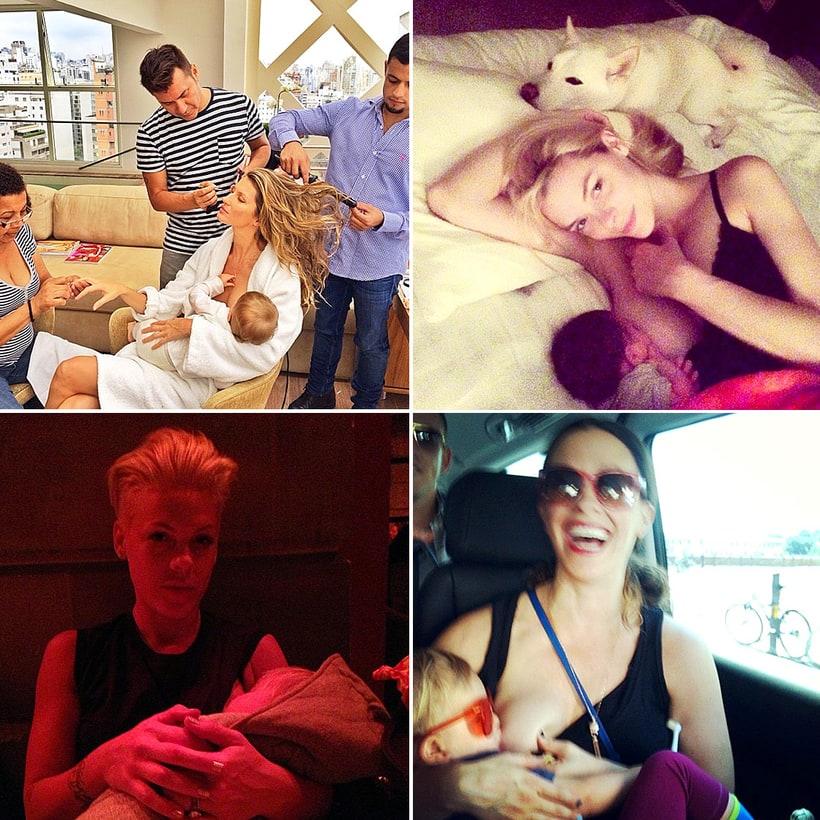 Breastfeeding dog celebrity