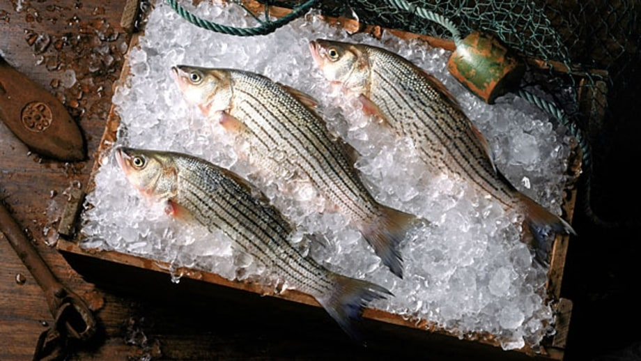 Find out where the fish was harvested (and when it's in season).