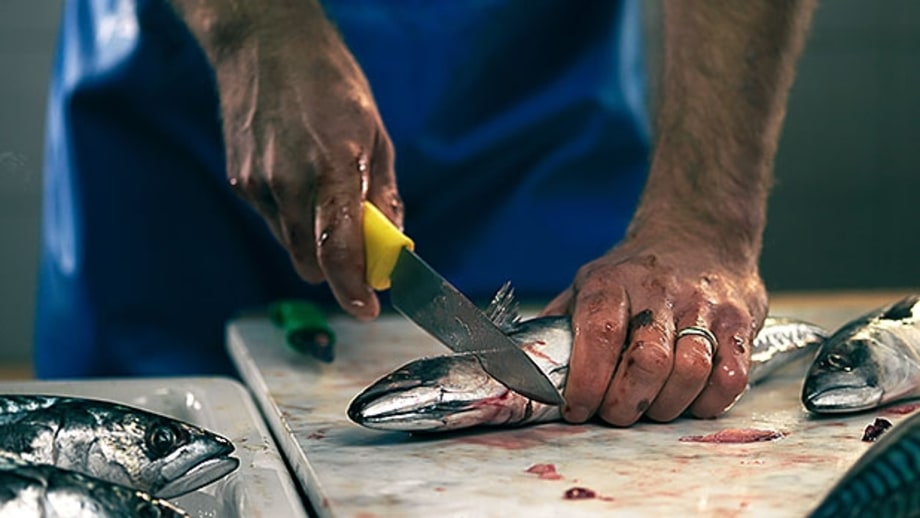 How To Pick your Fishmonger