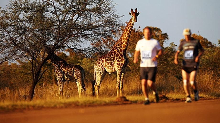 The Big Five Marathon, South Africa