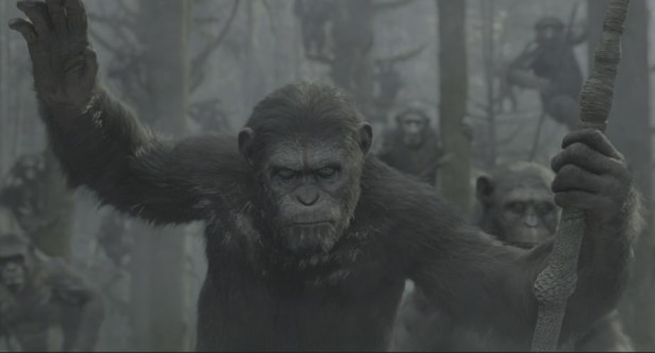 'Dawn of the Planet of the Apes' (July 11th)