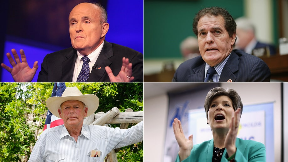 10 Dumbest Things Right-Wingers Said in 2014