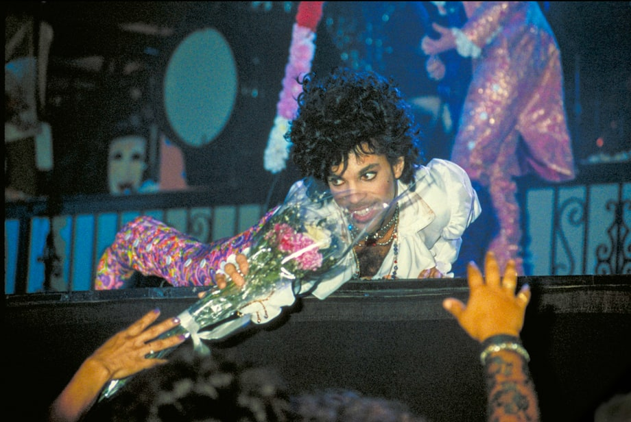 Prince Turns Bedroom Into a Butterfly Sanctuary (1985)