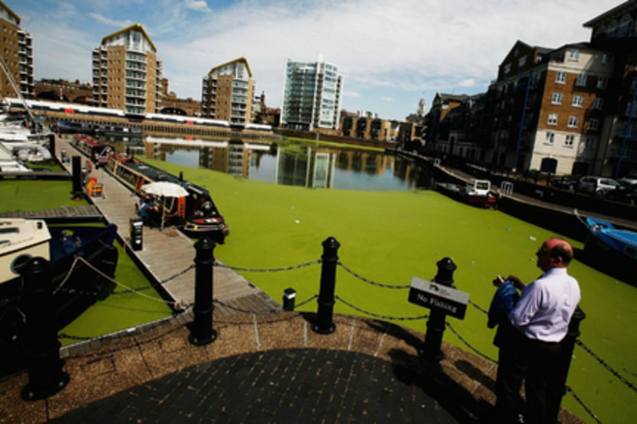 Climate Change Devistation Gallery: Canal London