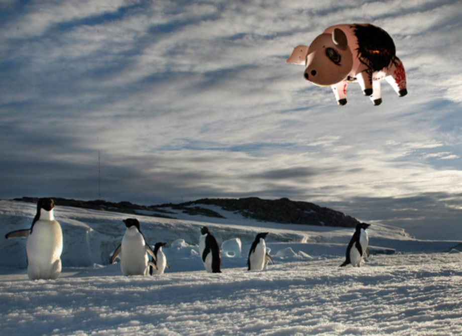 Roger Waters' Pig: Antarctica