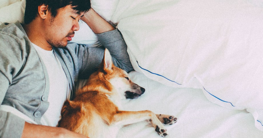 11 Products to Help You Get a Better Night's Sleep