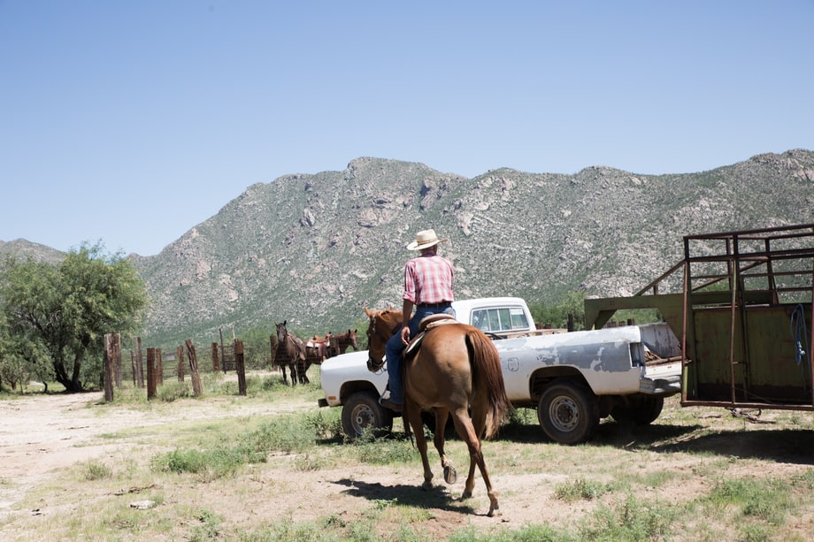 Meet Tucson's Ranchers and Rodeo Elite