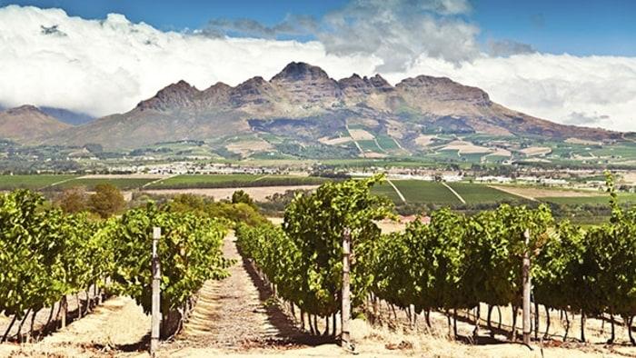south africa 39 s best winery eikendal stellenbosch men 39 s journal. Black Bedroom Furniture Sets. Home Design Ideas