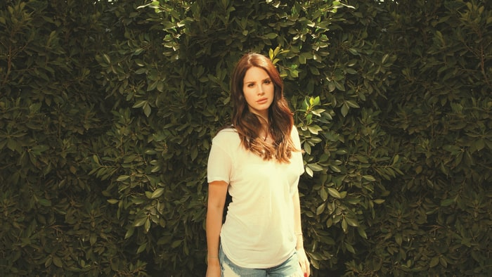 lana del rey young and beautiful lyrics  software