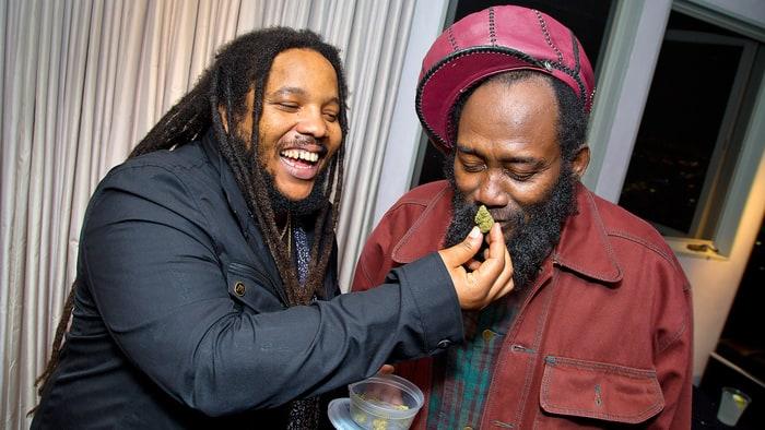 Marley Natural: Inside Reggae Dynasty's Cannabis Launch ...