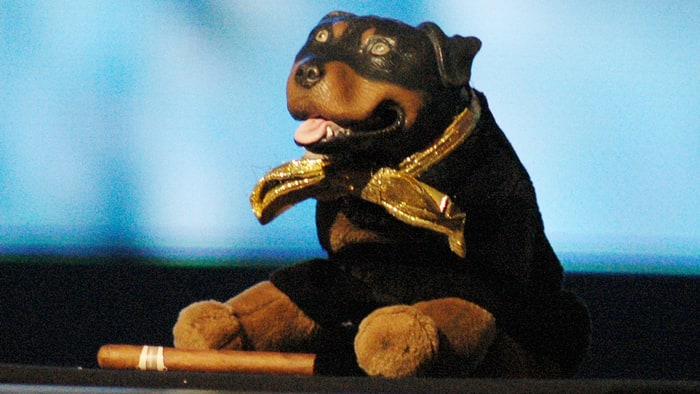 Triumph Insult Dog On Dog Show