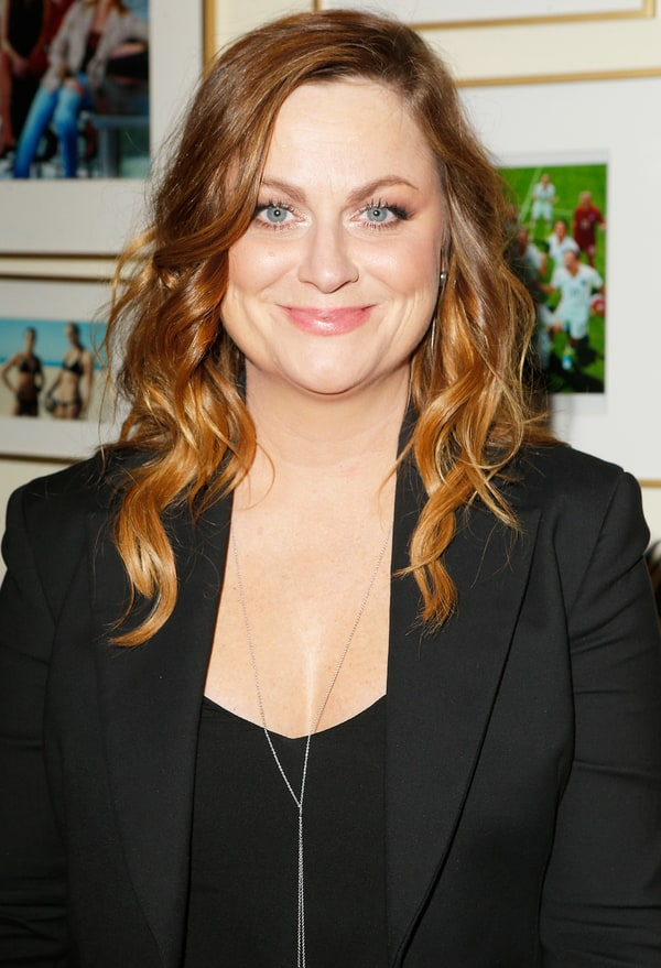 celebrity poehler dating lawyer benjamin graf