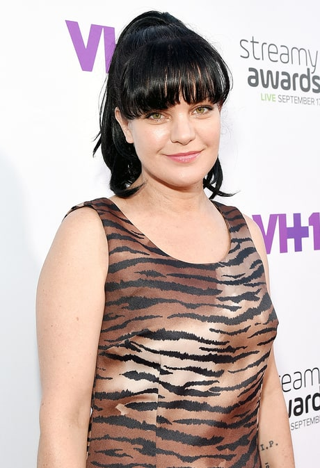 Pauley Perrette Gets Roughed Up by a Homeless Person Again: Read Her Story