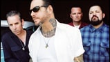 Social Distortion Cover Creedence Clearwater Revival - Song Premiere