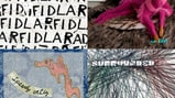 27 Best Albums You Didn't Hear in 2013