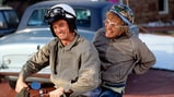 'Dumb and Dumber To' Due Next November