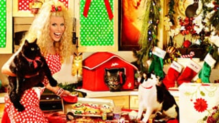 Howard Stern and Beth Ostrosky Stern Share Over-the-Top Christmas Card!