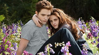 Twilight Saga: Breaking Dawn -- Part 2 Sweeps Razzies for Worst Film, Ensemble and More